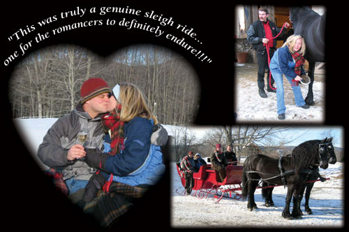 Friesians of Majesty - Testimonial about Sleigh Ride