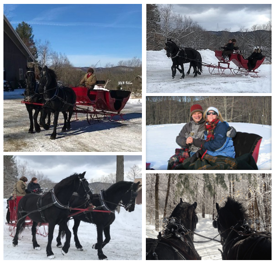 Sleigh Collage