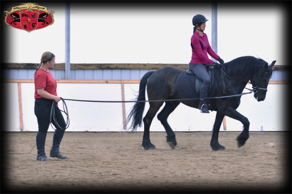 Dressage Riding Lessons
